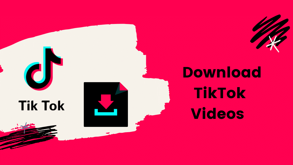 How To Download TikTok Videos?